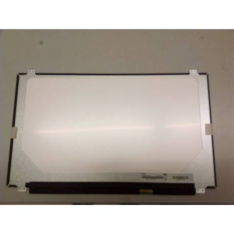 Pantalla Packard Bell Easynote MS2384